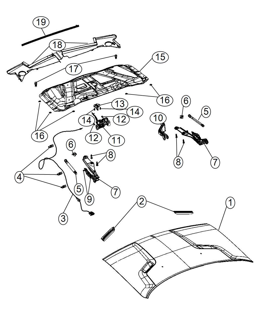2014 Dodge Challenger Weatherstrip  Hood To Radiator